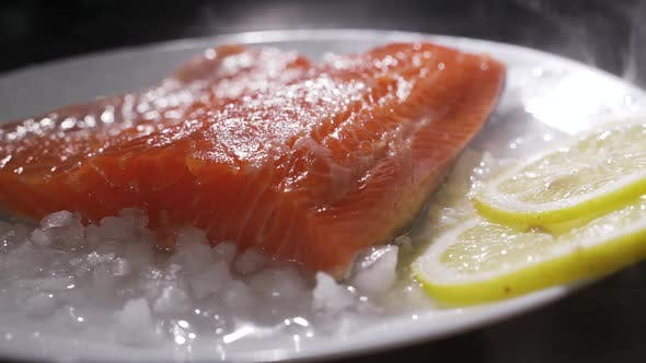 Fresh Raw Salmon on Ice. Fish on Ice. Fresh Fish