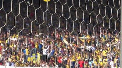 Cheering in Stadium