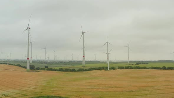 Cover Image for AERIAL: Multiple Wind Turbines on Rich Yellow Agriculture Field Rotating By the Force of the Wind
