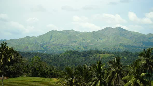 Thumbnail for Mountains with Tropical Forest. Philippines Bohol Island