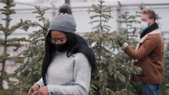 Thumbnail for Multiracial Couple in Masks Shop for Xmas Tree at Market