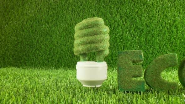 Thumbnail for Eco Light Bulb in Green Grass