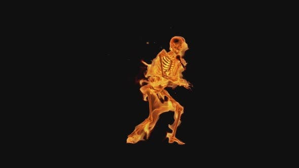 Thumbnail for Burning Skeleton - Style Rap