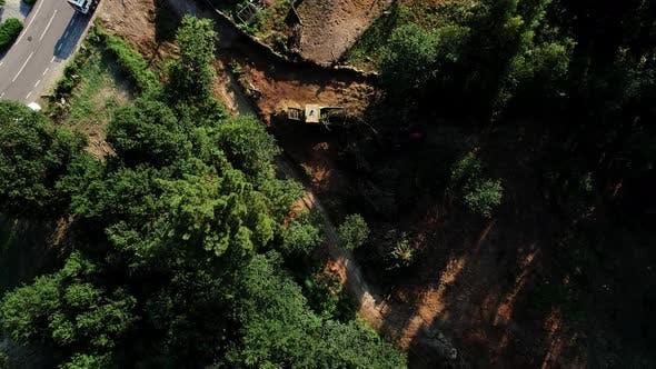 Thumbnail for Logging Truck At Lumber Mill Loaded Tree Trunks