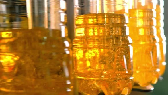 Thumbnail for Sunflower Oil in the Bottle Moving on Production Line