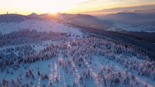 Sunrise Winter Alps Mountains Landscape Frozen Snowy Forest Aerial