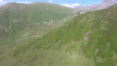Alpine Tundra Meadows in High Altitude Topography