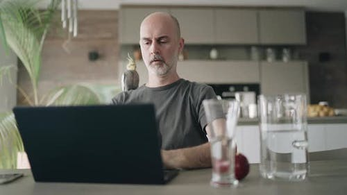 Covid-19 Curfew Man Working From Home at Laptop