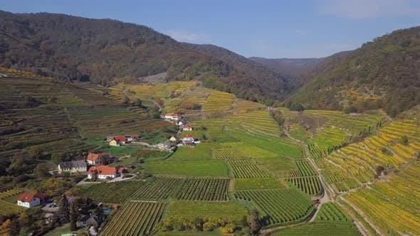 Aerial of Spitz Vineyards, Wachau Valley