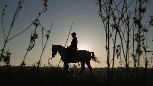 Thumbnail for Horsewoman Riding on Their Horse Over a Meadow Sunset . Silhouette. Slow Motion. Side View