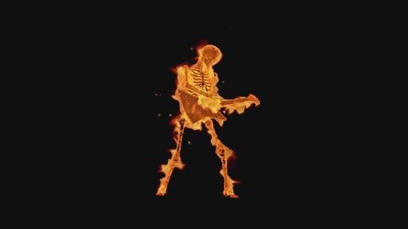 Fiery Skeleton - Show Guitarist