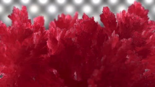Beautiful Red Crystals on a Background of Diode Illumination. Crystals Slowly Spin and Sparkle