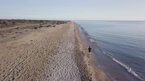 Thumbnail for Young runner man training on beautiful sunset at beach. Drone tracking