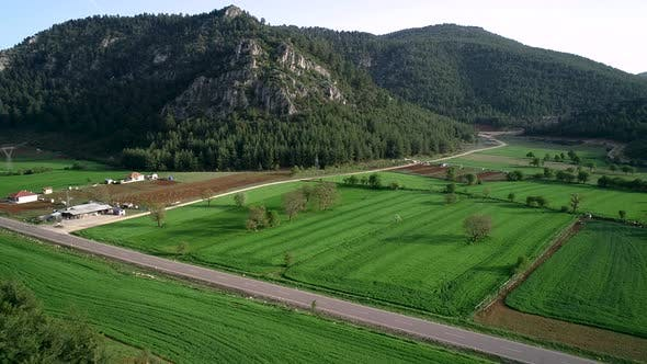 Aerial View Agricultural