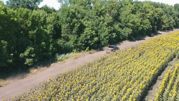 Thumbnail for Follow To Black Pickup Truck Fast Rides Through Rural Road. Aerial Shot of Car Driving at