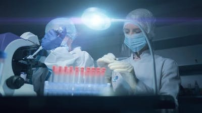 Life Scientists are Researching in Laboratory