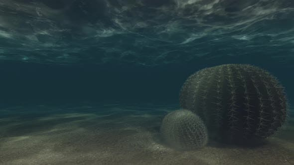 Thumbnail for Underwater Background Loopable 4K