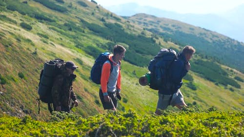 Three Male Hikers on Beautiful Mountain Background