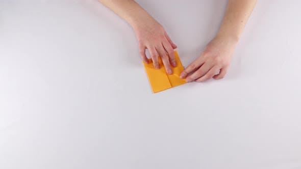 Bec d'oiseau. Origami. Blanc. Laps  de temps