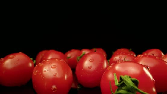 fresh red tomato with water drops