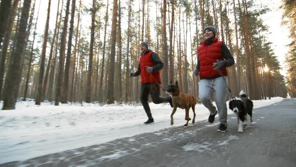 Thumbnail for Active Couple Running with Dogs in Woods