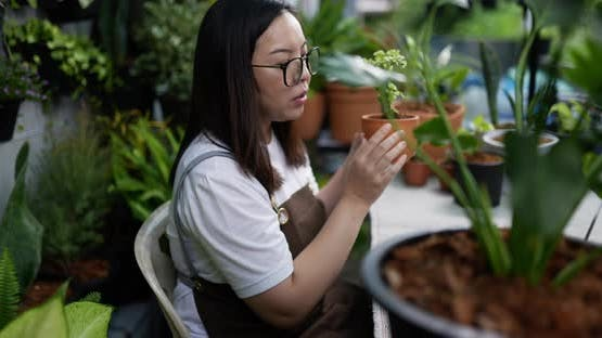 woman sell plant online.