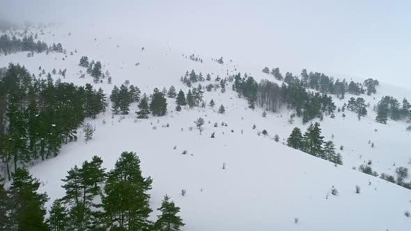 Thumbnail for Snowy Mountain