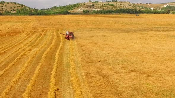 Thumbnail for The Combine Cuts the Wheat and Sows the Hay Bird's-eye View