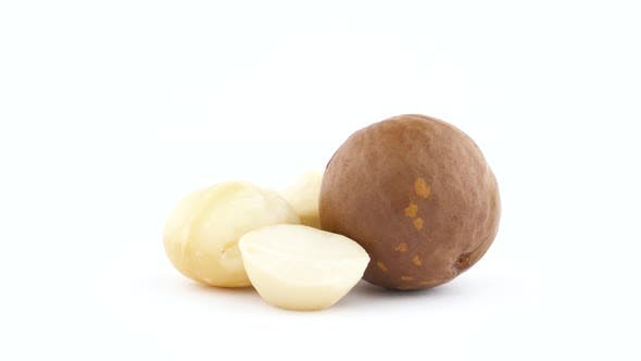 Thumbnail for Two Whole and One Half Macadamia Nut Kernels and One Nut in Shell