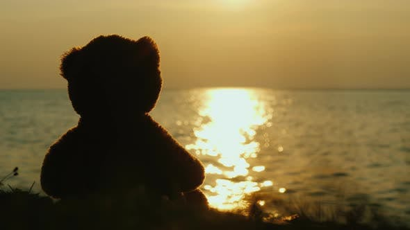 Thumbnail for Teddy Bear Silhouette Looks at the Sunrise Over the Sea