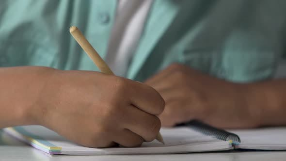 Cover Image for Schoolboy Doing Home Assignment, Learning how To Write, Calligraphy Practice