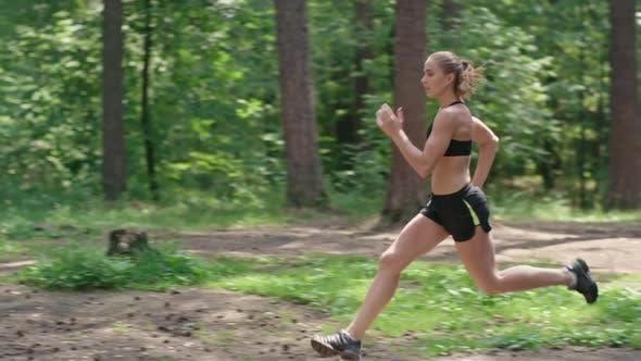 Thumbnail for Running Through Woodland