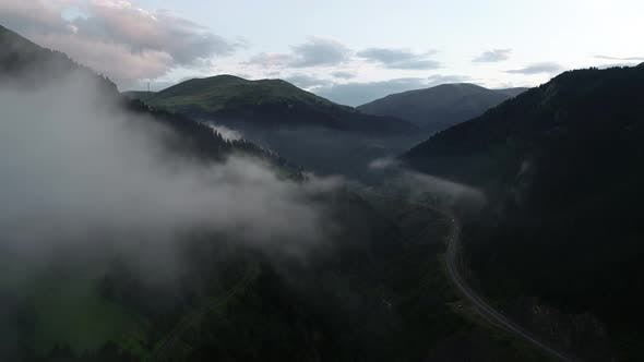 Cover Image for Fog Road In The Mountain Forest