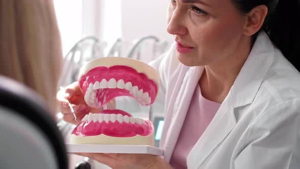 Cover Image for Dentist and patient making a conversation during check up