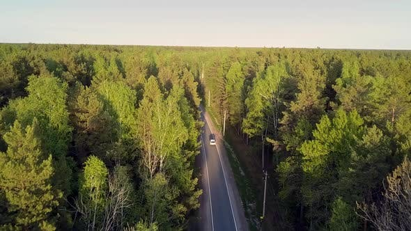Thumbnail for Nice Flight Over Boundless Forested Area with Car on Road