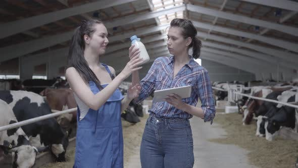 Thumbnail for Two Pretty Female Workers on the Cow Farm Checking Quality of the Milk in the Bottle. One Girl