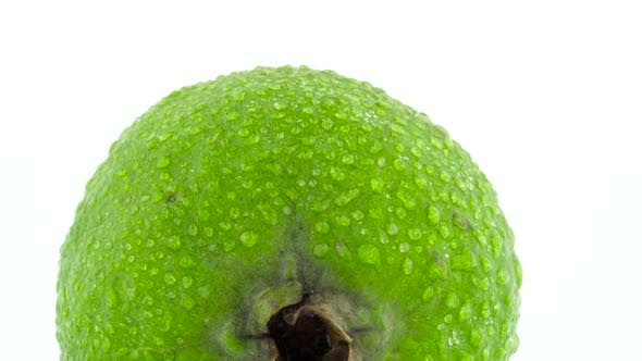 Thumbnail for Shooting of One Whole Feijoa Fruit with Water Drops. Slowly Rotating on the Turntable Isolated on