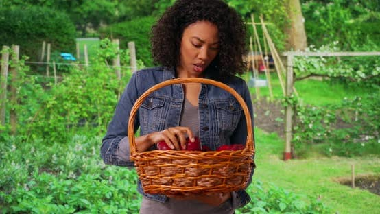 Thumbnail for Cheerful woman farmer posing for portrait with basket of shiny, delicious apples