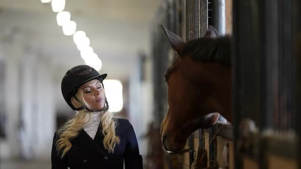 Female Jockey and Her Brown Horse are Communicating in Stable Professional Horse Rider
