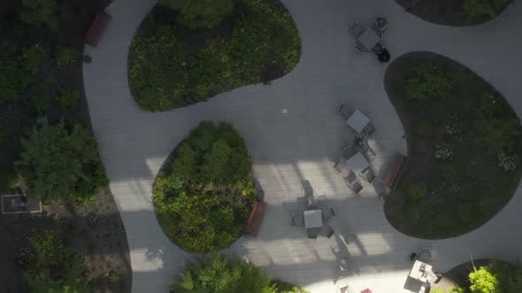 Thumbnail for AERIAL: Bird View of Skyscraper Garden with Green Trees in Urban Environment with City Traffic at