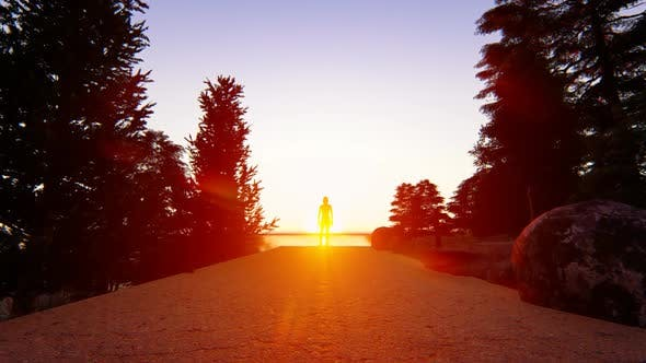 Thumbnail for Alone Sunset Landscape