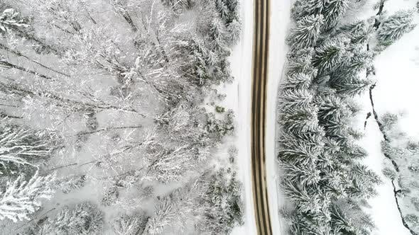Thumbnail for AERIAL: Car Driving Along the Forest Road in Winter