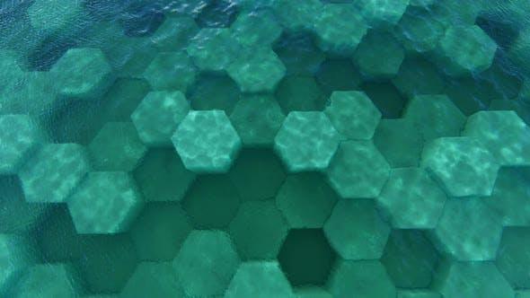 Thumbnail for Aquatic Surrealist Architecture