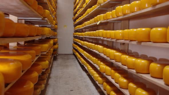 Thumbnail for Storage of Cheese of Different Varieties on Wooden Shelves in the Refrigerator. Cheese on the