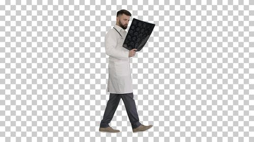 Doctor from middle east walking and looking, Alpha Channel