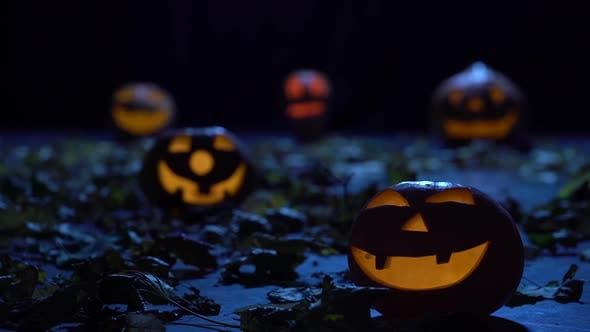 Thumbnail for Halloween Pumpkins Glow in the Forest with Horrible Faces, the Wind Blows Foliage