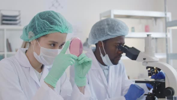 Thumbnail for Two Virologists Making Tests in Laboratory