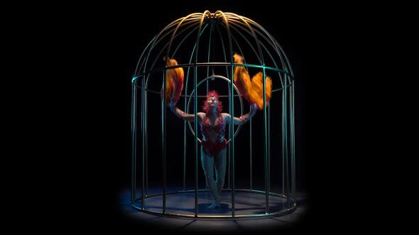 Thumbnail for Girl in a Cage Performs Different Movements with Her Hands She Is Like a Bird