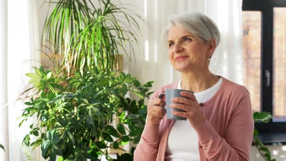 Thumbnail for Happy Senior Woman with Cup of Tea at Home