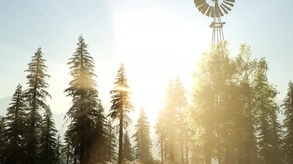 Thumbnail for Typical Old Windmill Turbine in Forest at Sunset